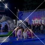 italia-s-got-talent-2013-team-volteggio-italia (3)