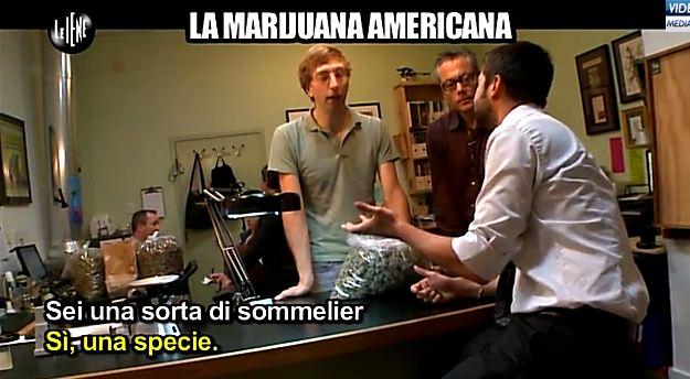 le-iene-marijuana-09