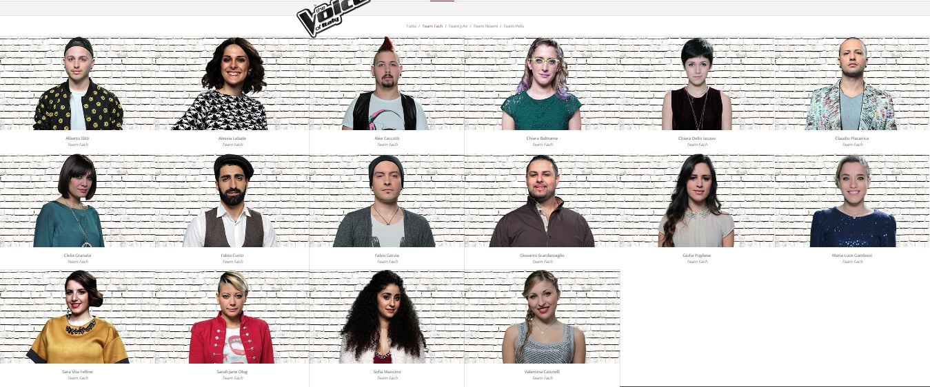 team-fach-the-voice-2015
